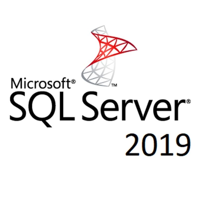 Microsoft SQL Server  2019 Standard Open